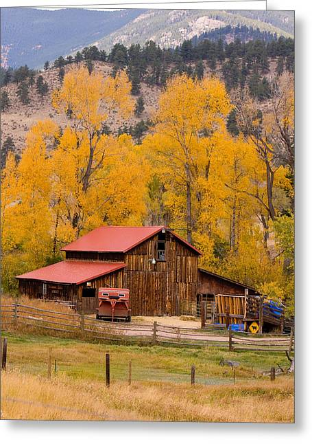 Rocky Mountain Barn Autumn View Greeting Card by James BO  Insogna