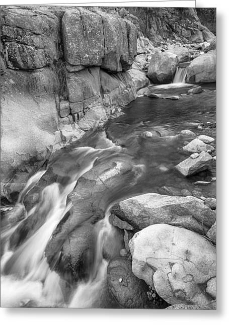 White And Black Waterfalls Greeting Cards - Rocky Mountain Canyon Streaming in Black and White Greeting Card by James BO  Insogna