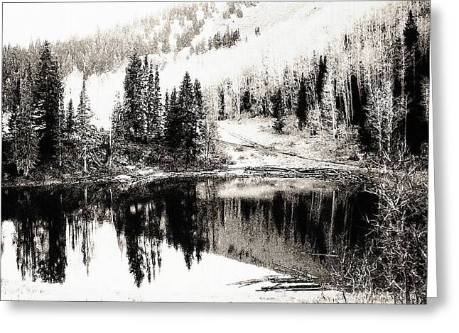 Best Sellers -  - Trees Reflecting In Water Greeting Cards - Rocky Mountain Lake - Black and White Greeting Card by Steve Ohlsen