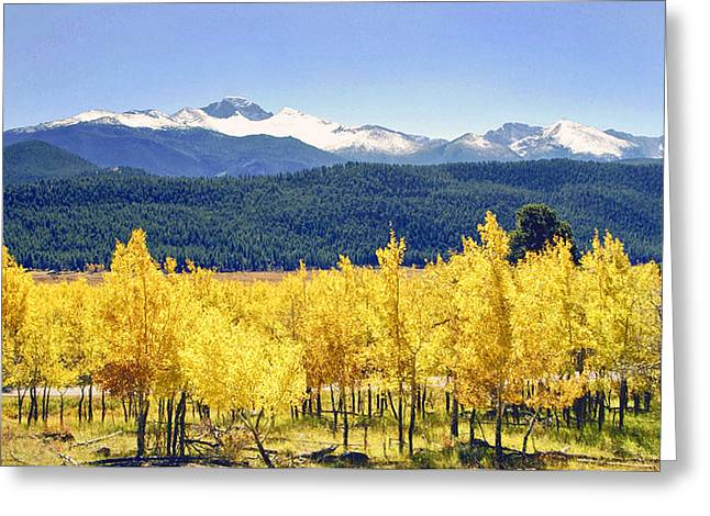 Rocky Mountain Park Colorado Greeting Card by James Steele