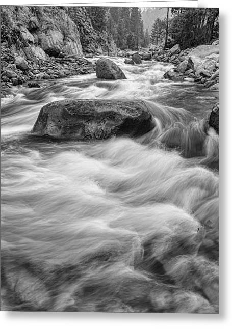 Fishing Creek Greeting Cards - Rocky Mountain Streaming in Black and White Greeting Card by James BO  Insogna