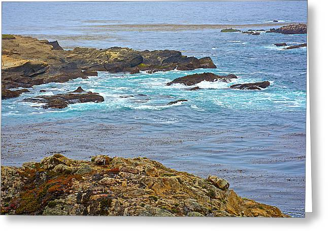 Rocky Points In Point Lobos State Reserve Near Monterey-california  Greeting Card by Ruth Hager