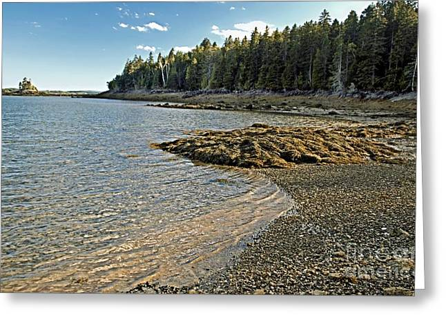 Maine Landscape Greeting Cards - Rocky Ripples Greeting Card by Catherine Melvin