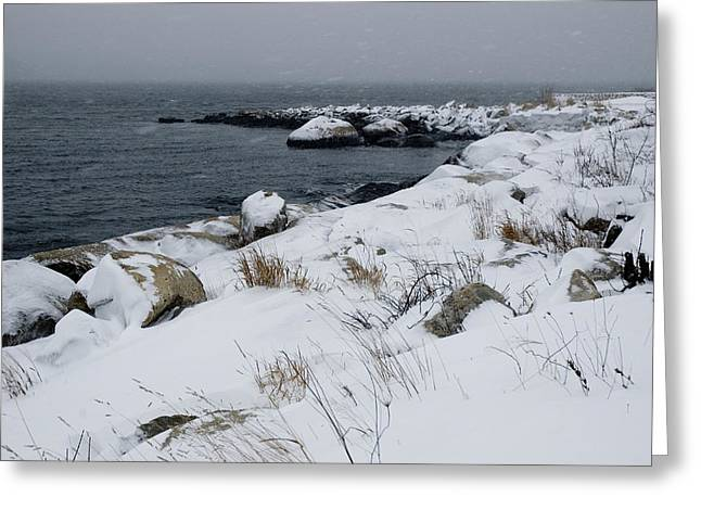 Groton Greeting Cards - Rocky Shoreline Of A River Covered Greeting Card by Todd Gipstein