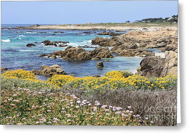 Rocky Surf With Wildflowers Greeting Card by Carol Groenen