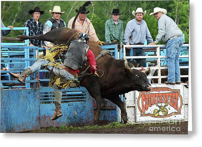Rodeo Life 6 Greeting Card by Bob Christopher