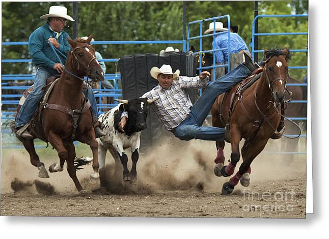 At Work Greeting Cards - Rodeo Steer Wrestling 1 Greeting Card by Bob Christopher