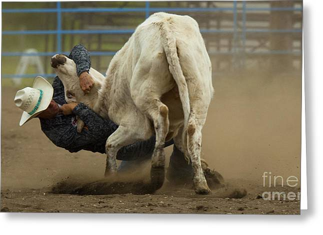 At Work Greeting Cards - Rodeo Steer Wrestling 3 Greeting Card by Bob Christopher