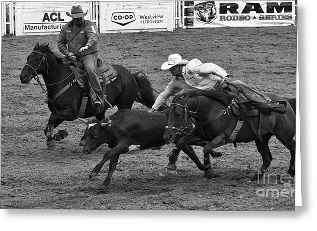 Steer Greeting Cards - Rodeo Steer Wrestling 7 Greeting Card by Bob Christopher