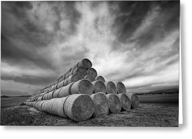 Monochrome Greeting Cards - Rollers Greeting Card by Piotr Krol (bax)