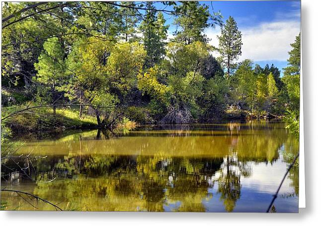 Prescott Greeting Cards - Rollin Down the River Greeting Card by Thomas  Todd