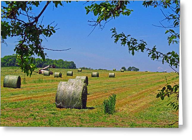 Sheds Greeting Cards - Rolling Bales Greeting Card by Tina M Wenger