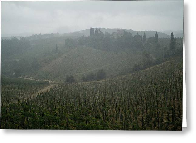 Rolling Hills Of Vineyards In Tuscany Greeting Card by Todd Gipstein