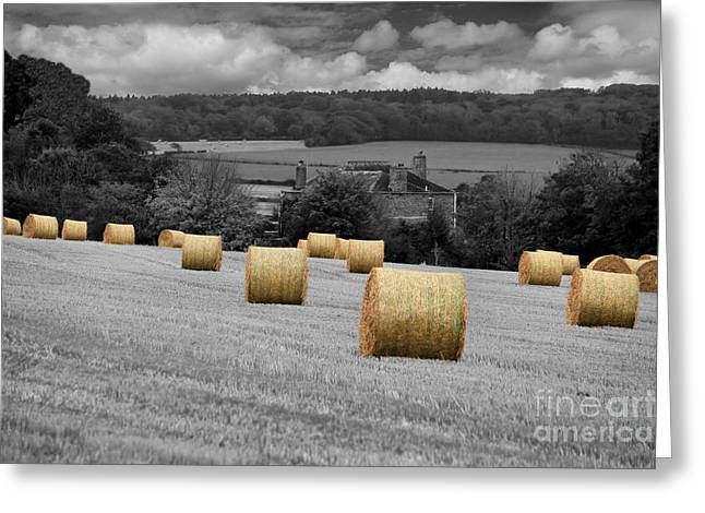 Bale Greeting Cards - Rolling Home Greeting Card by Carl Whitfield
