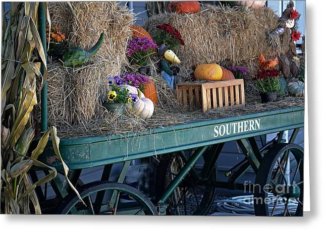 Rolling Into Fall Greeting Card by JW Hanley