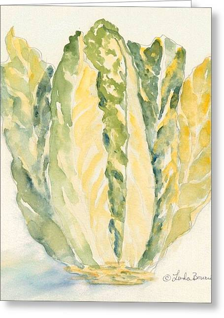 Romaine Paintings Greeting Cards - Romaine Greeting Card by Linda Bourie