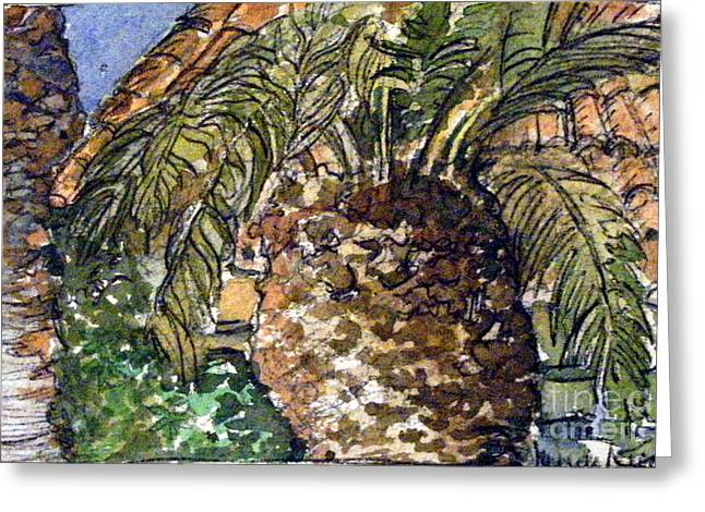 Palm Tree Greeting Cards Greeting Cards - Roman Palm Tree outside the Catacombs Greeting Card by Mindy Newman
