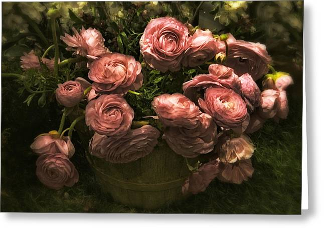 Floral Still Life Greeting Cards - Romantic Ranunculus Greeting Card by Jessica Jenney