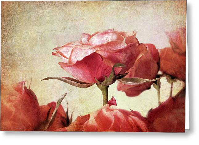 Texture Floral Greeting Cards - Romantic Roses Greeting Card by Jessica Jenney