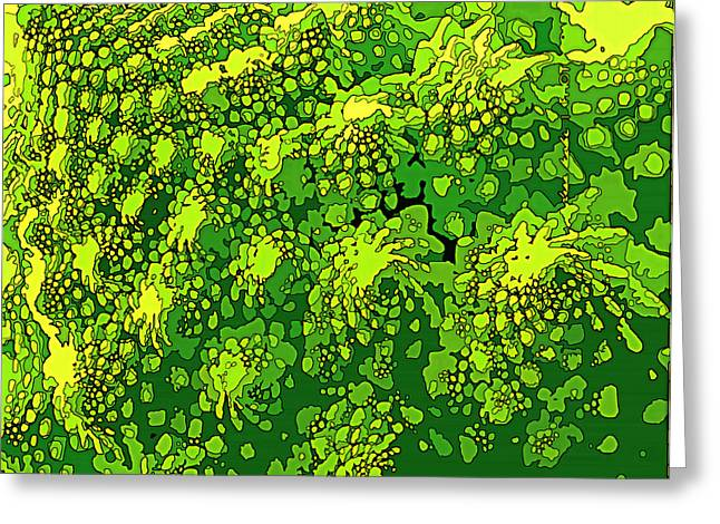 Broccoli Greeting Cards - Romenesco Broccoli Greeting Card by Sarah  Niebank