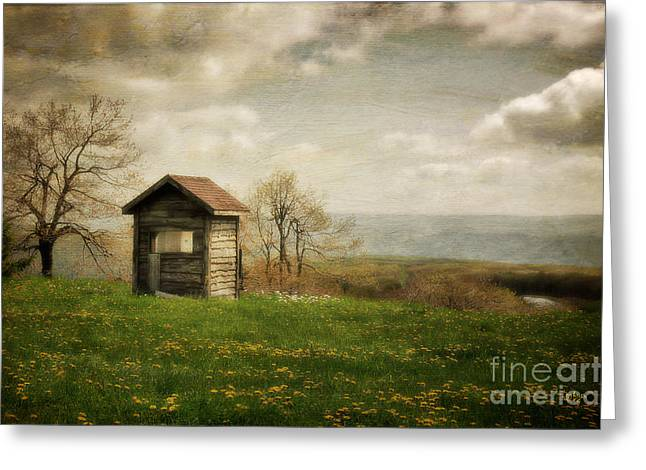 Shed Digital Art Greeting Cards - Room With A View Greeting Card by Lois Bryan