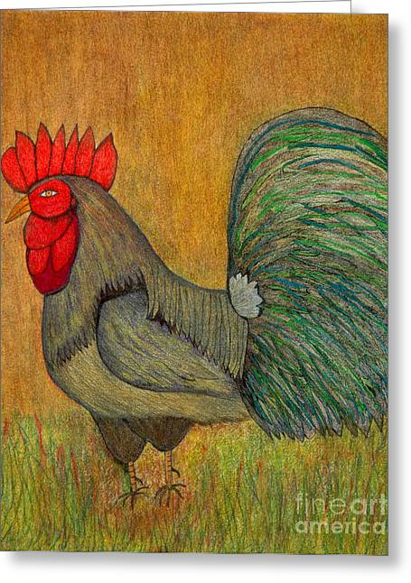 Indian Ink Mixed Media Greeting Cards - Rooster Feathers Greeting Card by Chary Castro-Marin