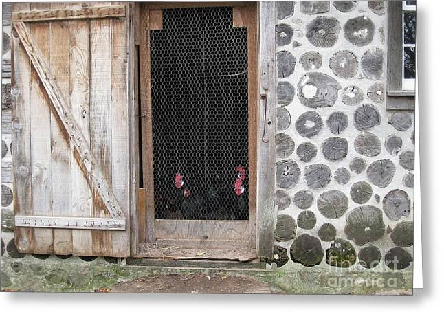 Barn Door Greeting Cards - Roosters at the Door Greeting Card by Nancy Anderson
