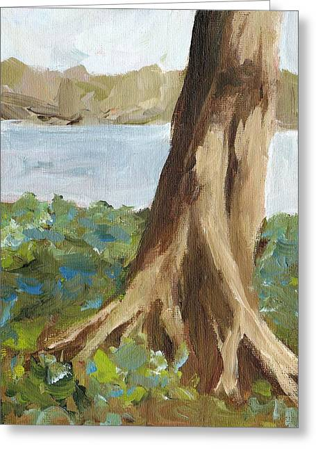 Tree Roots Paintings Greeting Cards - Rooted Greeting Card by Irene Pruitt
