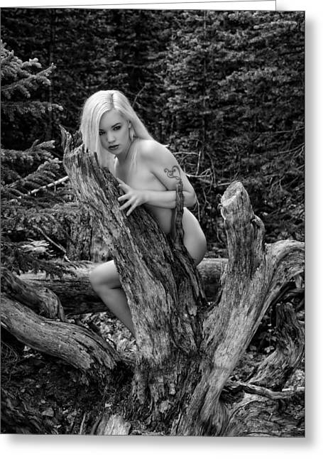 Implied Greeting Cards - Roots hidden beauty Greeting Card by Brad Alexander