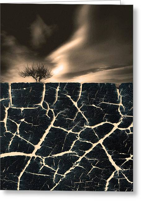 Man Made Abstract Greeting Cards - Roots Greeting Card by Tara Turner