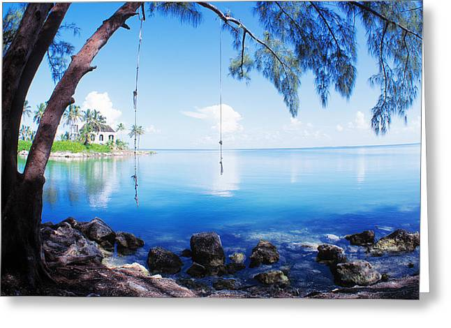 Youthful Greeting Cards - Rope Swing Over Water Florida Keys Greeting Card by Panoramic Images