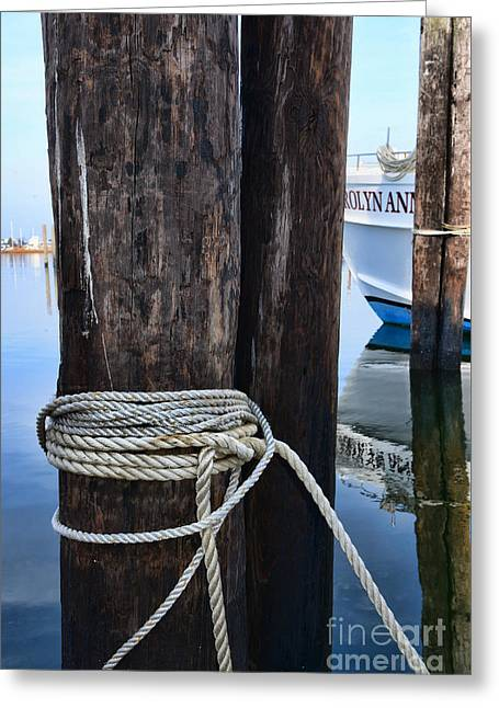 Ropes And Pilings Greeting Card by Paul Ward