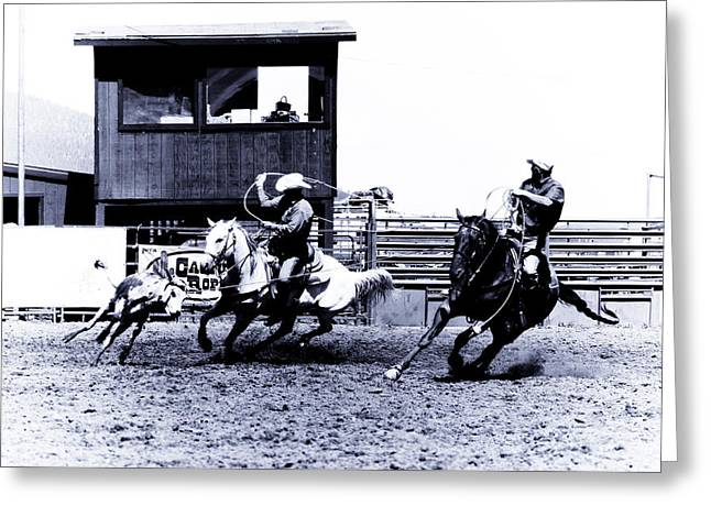 Roping Horse Greeting Cards - Roping 1 Greeting Card by Scott Sawyer