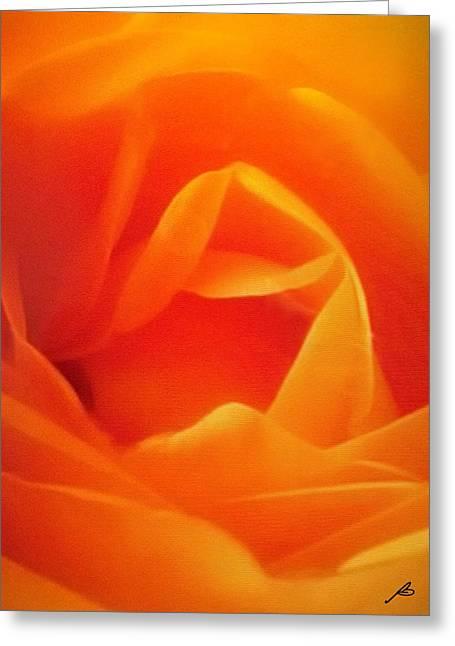 Rose Petals Greeting Cards - Rosa Greeting Card by Barbara Barbieri