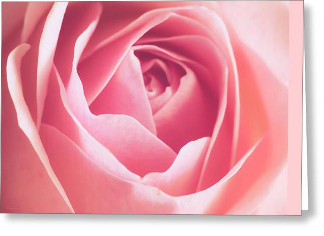 Rosa Greeting Card by Wim Lanclus