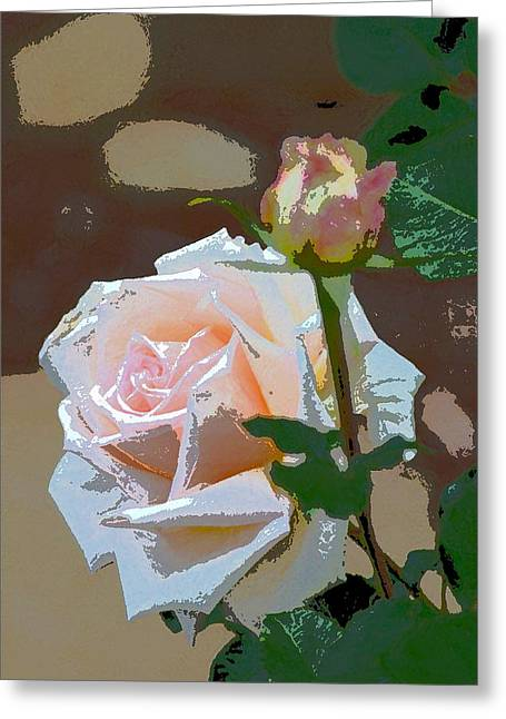 Pamela Cooper Greeting Cards - Rose 112 Greeting Card by Pamela Cooper
