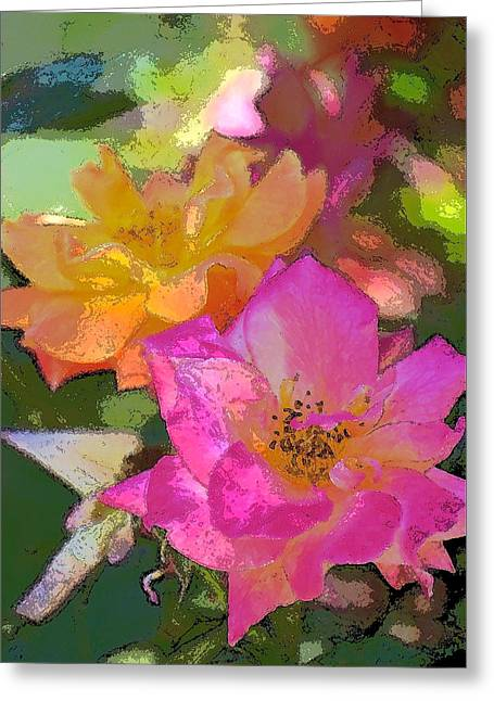 Rose 114 Greeting Card by Pamela Cooper