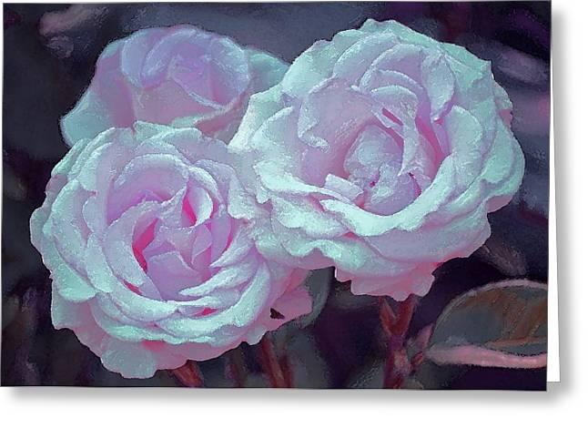 Rose 118 Greeting Card by Pamela Cooper