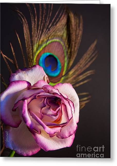 Flower Design Greeting Cards - Rose 9 Greeting Card by Johannes Murat