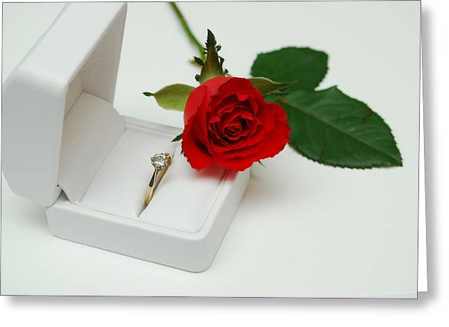 Rose And Diamond Ring Greeting Card by Terence Davis