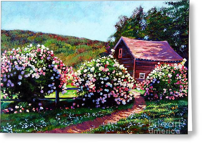 Country Cottage Greeting Cards - Rose Bushes Greeting Card by David Lloyd Glover