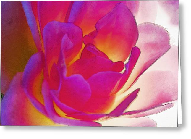 Rose Effusive Greeting Card by Lynne Furrer