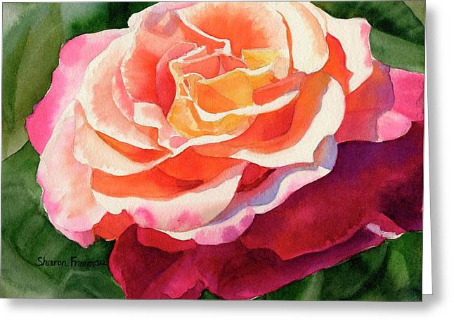 Realistic Watercolor Greeting Cards - Rose Fringed with Red Petals Greeting Card by Sharon Freeman