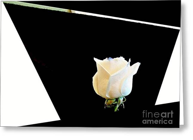 Rose In The Middle Greeting Card by Marsha Heiken