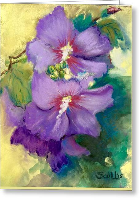 Petals Pastels Greeting Cards - Rose of Sharon Greeting Card by Judith Scull