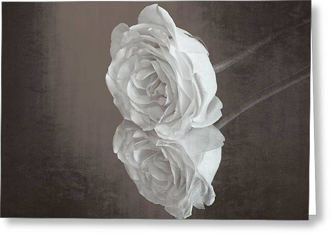 Rose Reflection Greeting Card by Garvin Hunter
