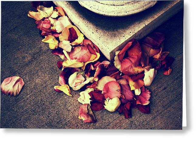 Rose Remains Greeting Card by Jessica Jenney