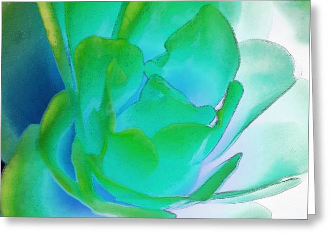 Rose Sea Greeting Card by Lynne Furrer