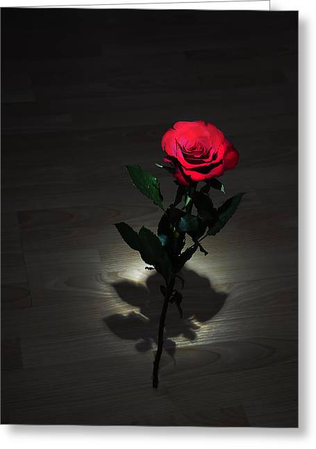 Floral Digital Art Greeting Cards - Rose Greeting Card by Svetlana Sewell