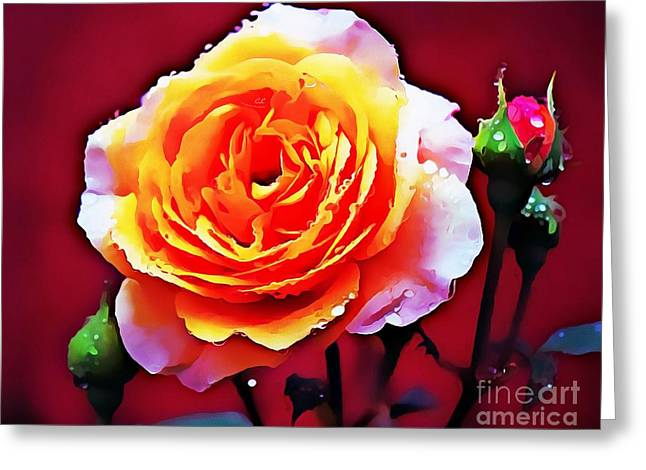 Pillow With Roses Greeting Cards - Rose Yellow With A Hint Of Pink Greeting Card by Catherine Lott